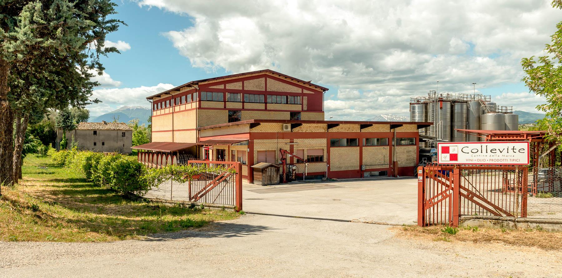 Collevite-cantina-monsampolo